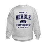 Beagle University Sweatshirt
