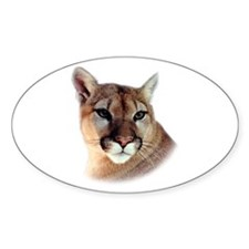 Cindy Men's CougarWear Oval Decal