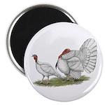 """Turkeys: White Holland 2.25"""" Magnet (10 pack)"""