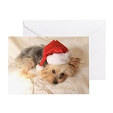 Santa Yorkie - Greeting Card