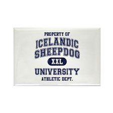 Icelandic Sheepdog U Rectangle Magnet