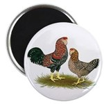Russian Orloff Chickens Magnet