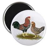 "Russian Orloff Chickens 2.25"" Magnet (100 pac"