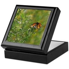 Viceroy Butterfly Keepsake Box