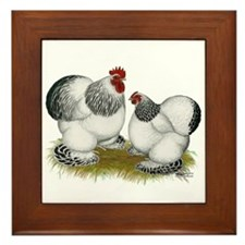 Cochins: Columbian Bantams Framed Tile