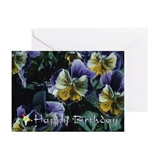 Eastern Star Birthday Cards (Pk of 20)