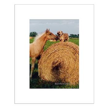 Palomino Horse and Dog Small Poster