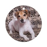 Beagle, Jack Russel Mix Ornament (Round)