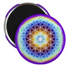 "Cute Golden mean 2.25"" Magnet (100 pack)"