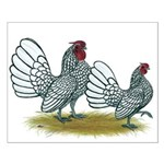 Sebright Silver Bantams Small Poster