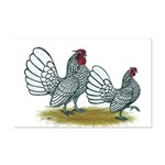 Sebright Silver Bantams Mini Poster Print