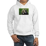 Cocker Spaniel Puppies Photo Hooded Sweatshirt