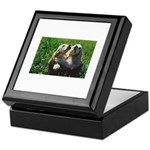 Cocker Spaniel Puppies Photo Keepsake Box