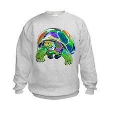 Rainbow Tortoise Sweatshirt