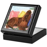 Irish setter Square