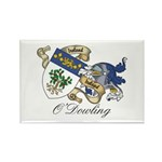 O'Dowling Sept Rectangle Magnet (10 pack)