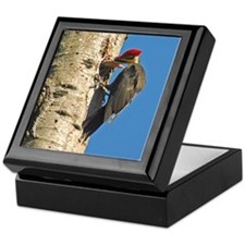 Pileated Woodpecker Family Keepsake Box