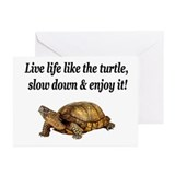 LOVE A TURTLE Greeting Cards (Pk of 20)