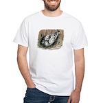 Nesting Pigeons White T-Shirt