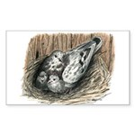 Nesting Pigeons Sticker (Rectangle 50 pk)