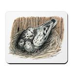 Nesting Pigeons Mousepad