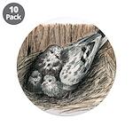 Nesting Pigeons 3.5