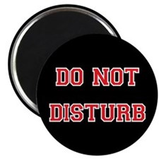 Do Not Disturb Magnet