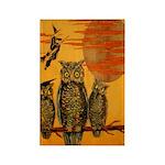 3 Owls Rectangle Magnet