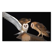 Molly and McGee Sticker (Rectangle 10 pk)