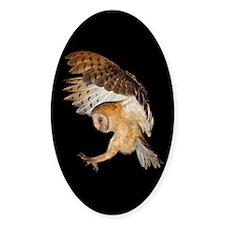 Molly Flying In Sticker (Oval 10 pk)