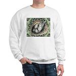 Nesting Pigeons Decorative Sweatshirt