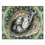 Nesting Pigeons Decorative Small Poster