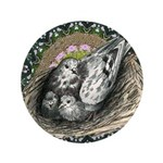 "Nesting Pigeons Decorative 3.5"" Button (100 p"