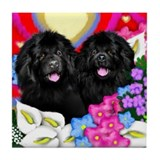 Newfoundland Dogs Love Tile Coaster