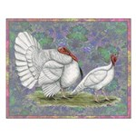 White Holland Turkeys Small Poster