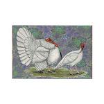 White Holland Turkeys Rectangle Magnet
