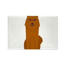 Cute Zangersheide Boxer Brief