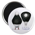 """Tumbler Baldhead Pigeon 2.25"""" Magnet (10 pack"""