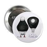 """Tumbler Baldhead Pigeon 2.25"""" Button"""