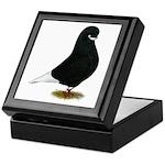 Tumbler Beard Pigeon Keepsake Box