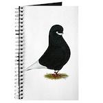 Tumbler Beard Pigeon Journal