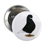 "Tumbler Beard Pigeon 2.25"" Button (10 pack)"