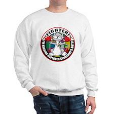 Asperger's Syndrome Fighter C Sweatshirt