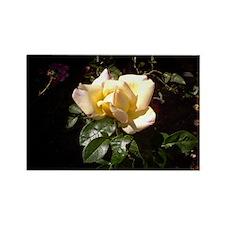 Yellow Rosebud Rectangle Magnet