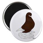Tumbler Pigeon Bearded Magnet