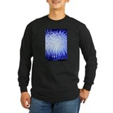 Air Force Fireworks T