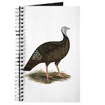 Turkey: Eastern Wild Hen Journal