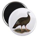 """Turkey: Eastern Wild Hen 2.25"""" Magnet (100 pa"""
