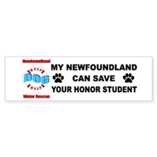 Save Your Honor Student Bumper Sticker