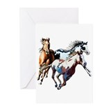 Horses Greeting Cards (20 Pack)
